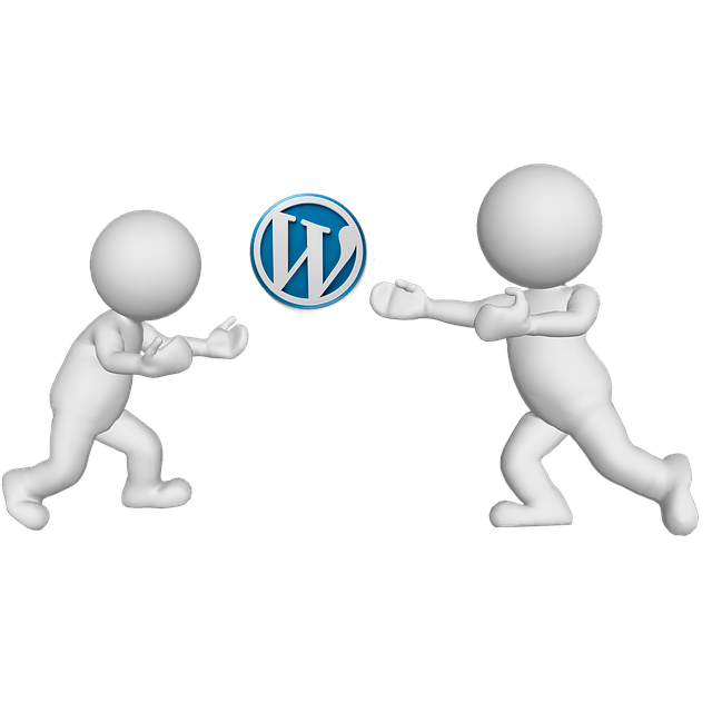 Agence WordPress Nantes : Expert WordPress