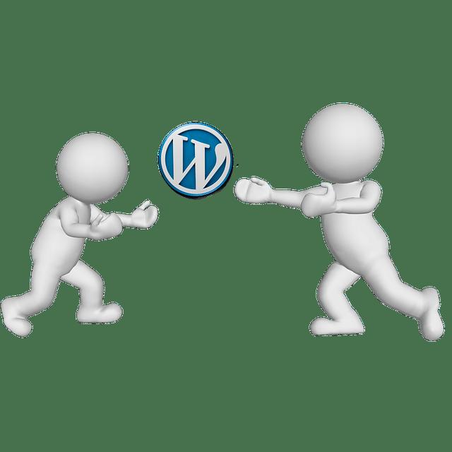 Agence WordPress Nantes : Expert WordPress